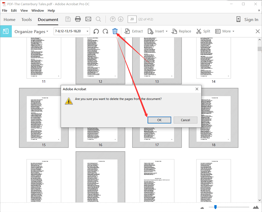 Adobe Acrobat Pro PDF- Pages