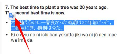 Google Translate Extension Klicken Sie auf das Symbol
