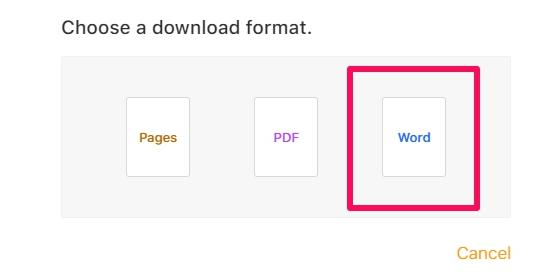 iCloud Choose Word Format