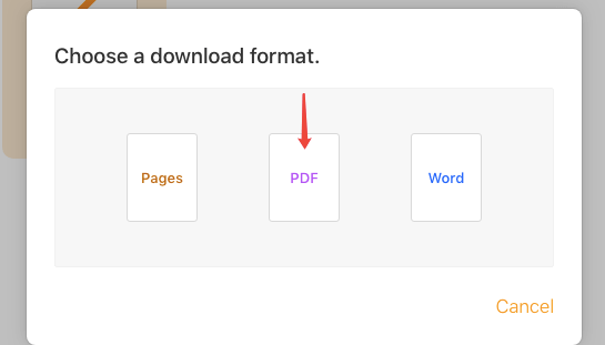 iCloud Download A Copy PDF