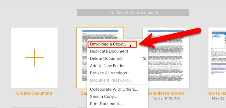 iCloud Download a Copy