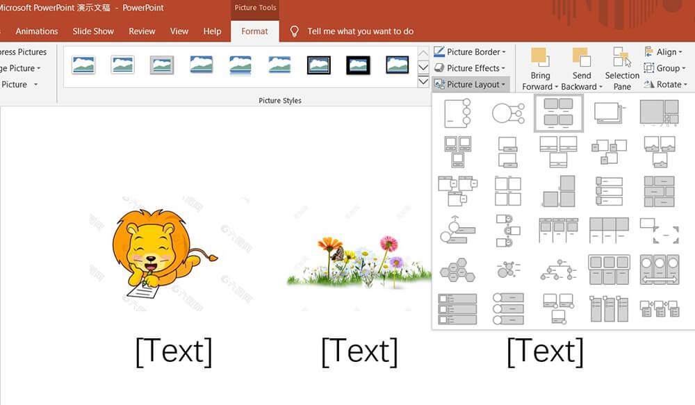 Layout immagine Formato immagine strumenti di Microsoft PowerPoint