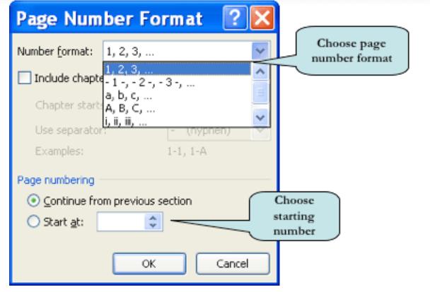 Formato de número de página de Microsoft Word 2007