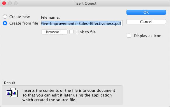 Microsoft Word Inserisci oggetto PDF