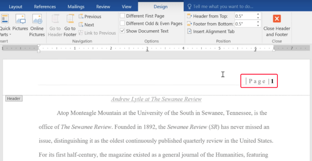 Microsoft Word Inserted Page Numbers