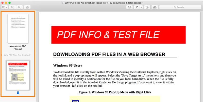 Preview Visualizza PDF