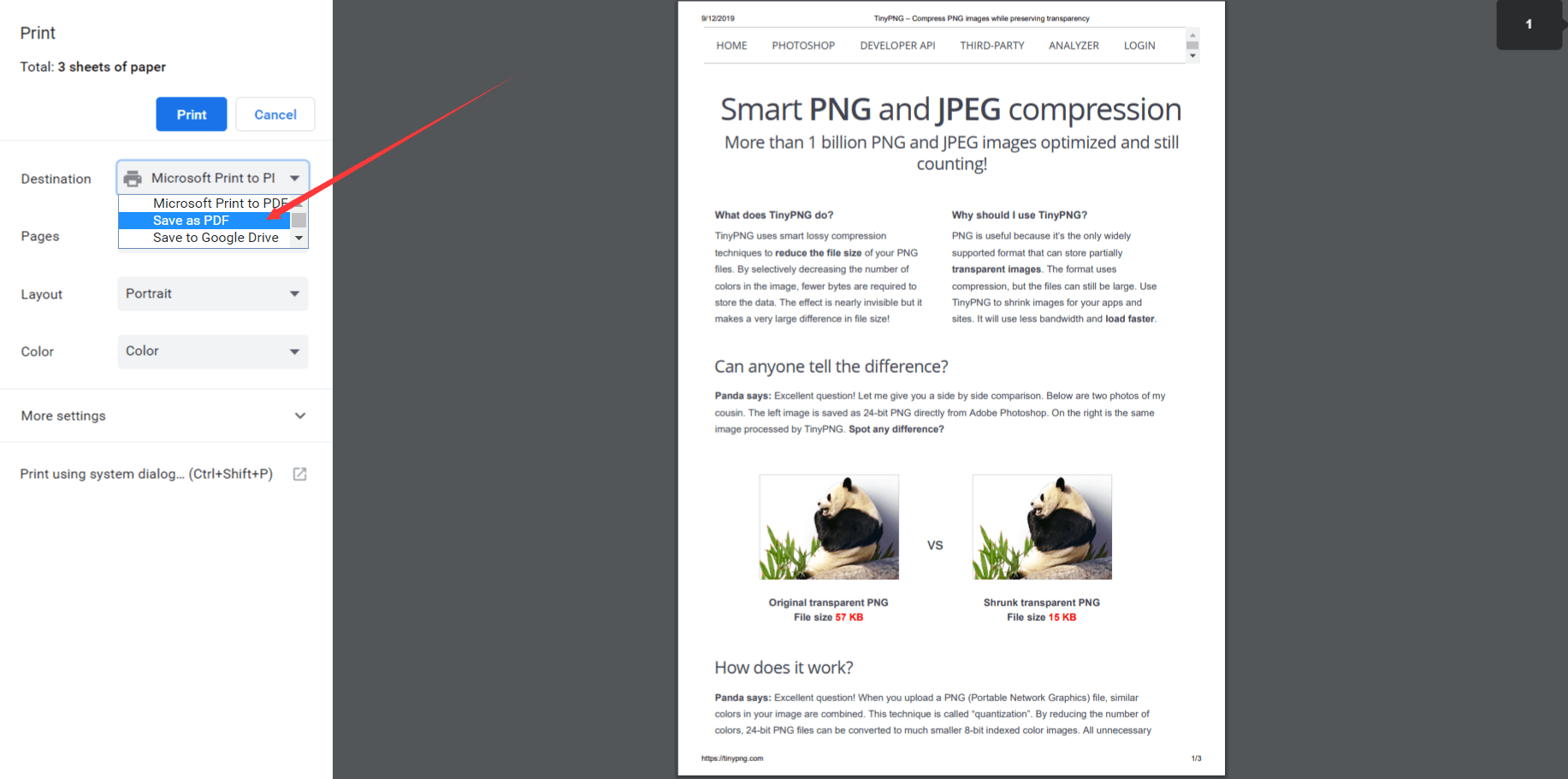 Save Webpage as PDF with Chrome