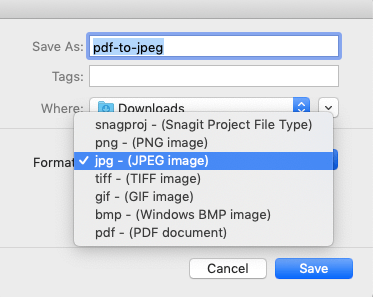 Snagit Save PDF As JPEG