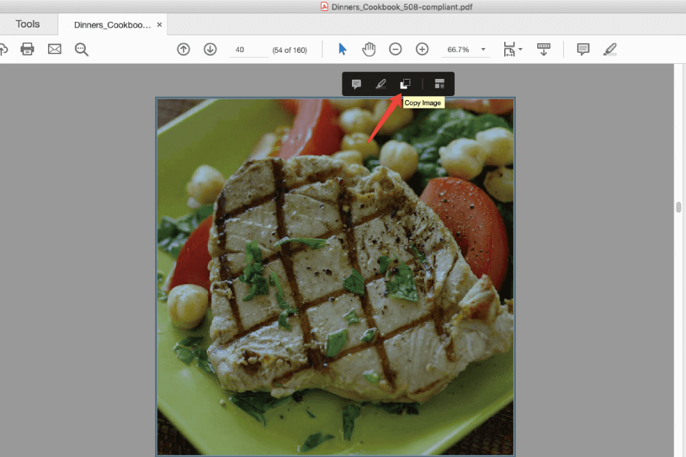Adobe Reader Copy PDF Image