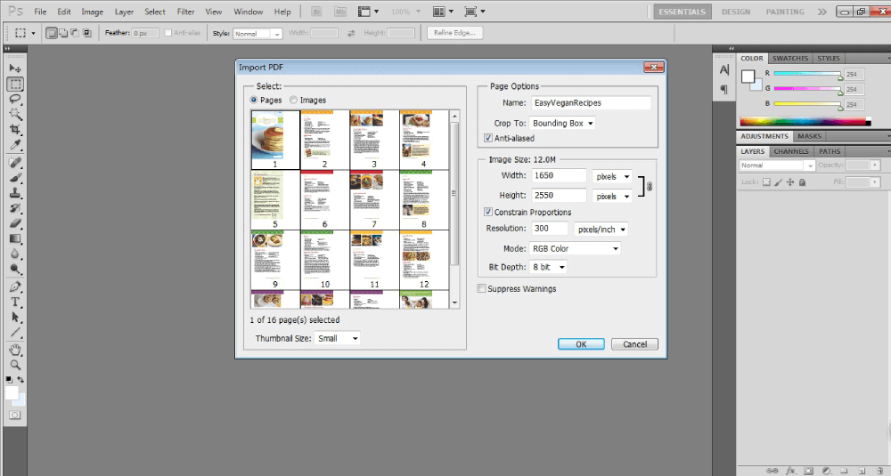 Photoshop Import PDF